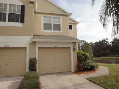 Townhouse Sold: 2844 Conch Hollow Dr