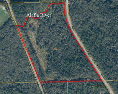 Lithia Residential Lots & Land For Sale: E Keysville Road