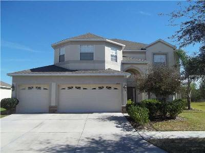 Riverview FL Single Family Home For Sale: $255,000