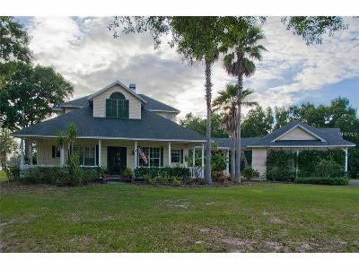Odessa FL Single Family Home For Sale: $1,295,000