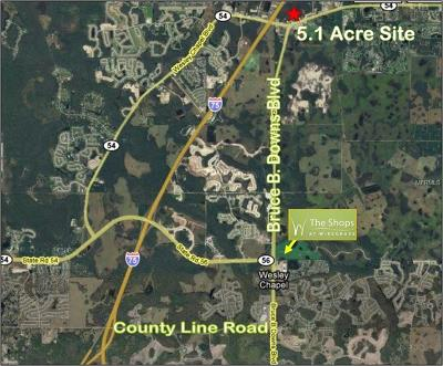 Wesley Chapel Residential Lots & Land For Sale: State Road 54