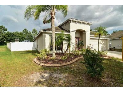 Hernando County, Hillsborough County, Pasco County, Pinellas County Single Family Home For Sale: 13209 Evening Sunset Lane