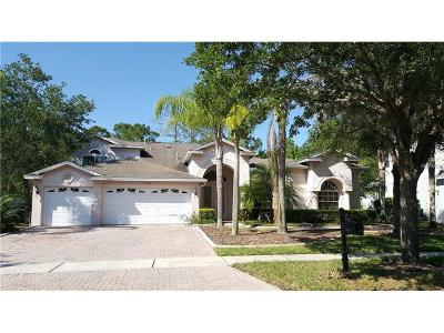 Hernando County, Hillsborough County, Pasco County, Pinellas County Single Family Home For Sale: 5046 Devon Park Drive