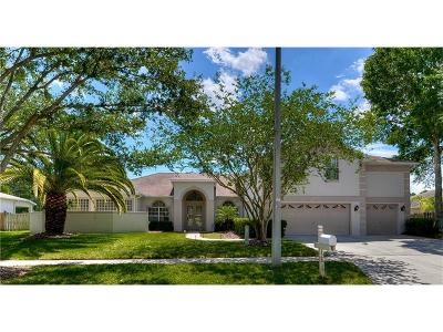Tampa Single Family Home For Sale: 12815 Pacifica Place