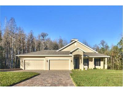 Odessa Single Family Home For Sale: 16271 Chastain Road