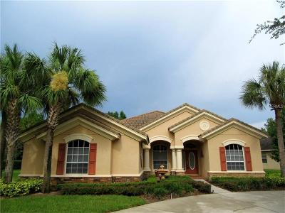 Hernando County, Hillsborough County, Pasco County, Pinellas County Single Family Home For Sale: 21022 Lake Vienna Drive