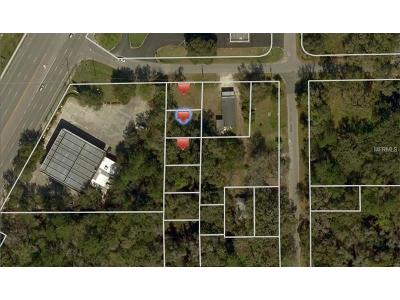 Residential Lots & Land For Sale: Daniel Avenue