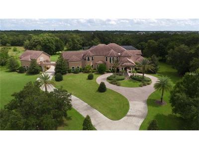 Lithia FL Single Family Home For Sale: $2,290,000