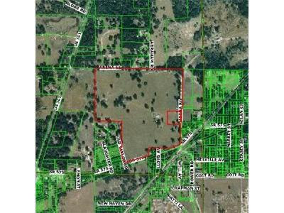 Residential Lots & Land For Sale: Arena Road