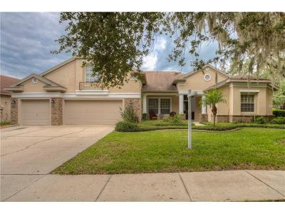 Hernando County, Hillsborough County, Pasco County, Pinellas County Single Family Home For Sale: 5906 Jaegerglen Drive