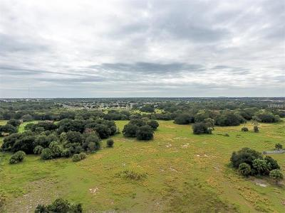 Residential Lots & Land For Sale: 12398 Bull Frog Creek Road