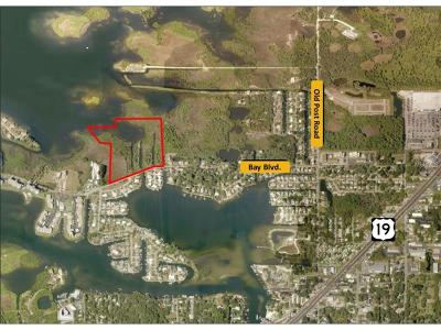 Pasco County Residential Lots & Land For Sale: 0 Bay Boulevard