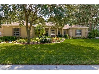 Lithia FL Single Family Home For Sale: $549,900