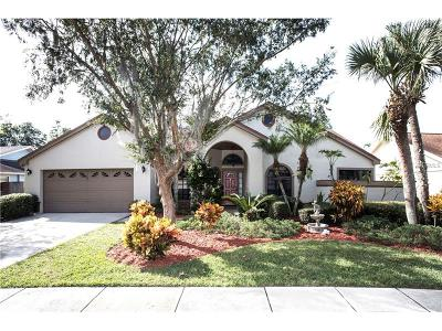 Tampa Single Family Home For Sale: 15814 Hampton Village Drive