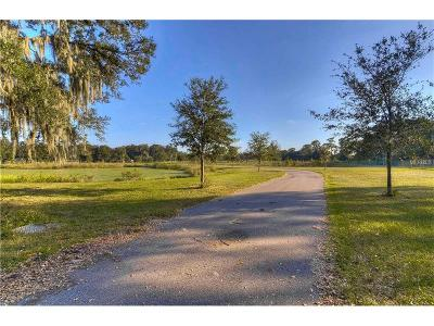 Hernando County, Hillsborough County, Pasco County, Pinellas County Mobile/Manufactured For Sale: 3604 Little Stearns Road