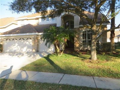 Tampa Single Family Home For Sale: 17829 Arbor Creek Drive