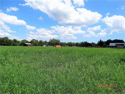 Residential Lots & Land For Sale: 1137 Bluefield Road
