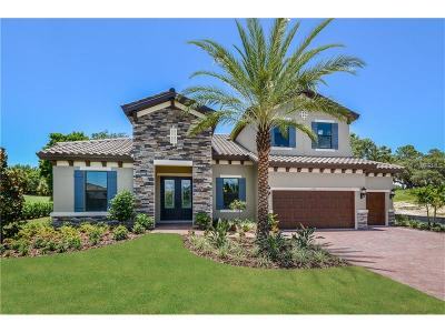 Palm Harbor Single Family Home For Sale: 1305 Via Verdi Drive