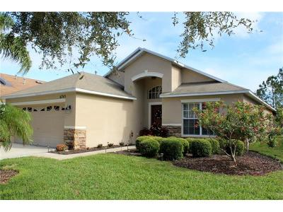 Apollo Beach Single Family Home For Sale: 6745 Monarch Park Drive