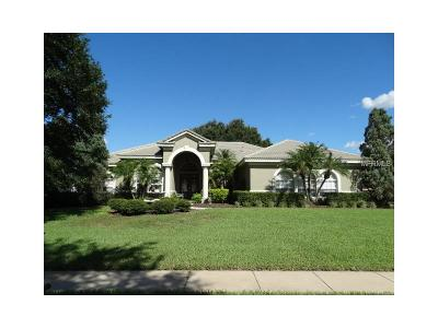 Hernando County, Hillsborough County, Pasco County, Pinellas County Single Family Home For Sale: 19801 Wetherby Lane