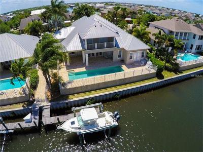 Apollo Beach Single Family Home For Sale: 607 Islebay Drive