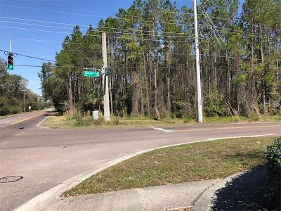 Lutz FL Residential Lots & Land For Sale: $699,000