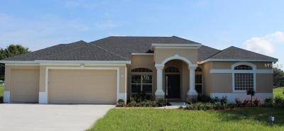 Weslely Chapel, Wesley Chapel Single Family Home For Sale: 30205 Vienna Woods Lane