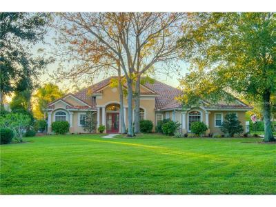 Odessa Single Family Home For Sale: 10629 Echo Lake Drive