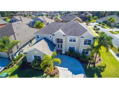 Hernando County, Hillsborough County, Pasco County, Pinellas County Single Family Home For Sale: 27014 Shoregrass Drive