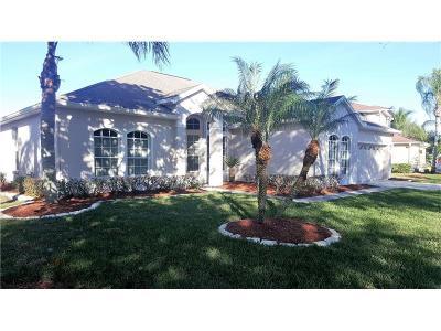 Hernando County, Hillsborough County, Pasco County, Pinellas County Single Family Home For Sale: 208 Rosana Drive