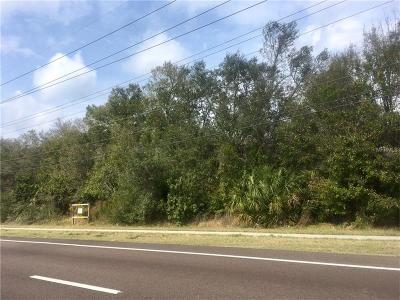Ruskin Residential Lots & Land For Sale: S 41st Highway