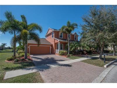 Apollo Beach Single Family Home For Sale: 5318 Loon Nest Court