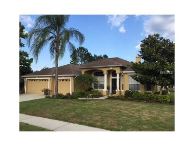 Hernando County, Hillsborough County, Pasco County, Pinellas County Single Family Home For Sale: 19117 Saint Laurent Drive