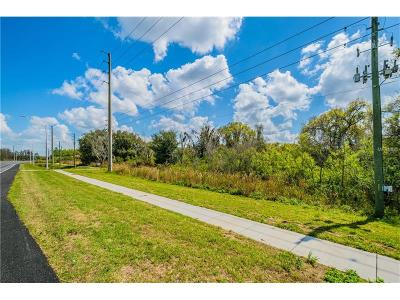 Residential Lots & Land For Sale: 20600 State Road 54