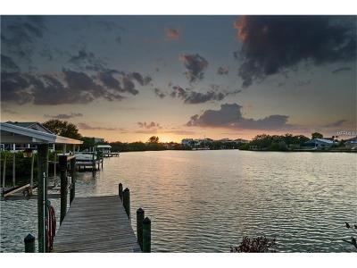 Apollo Beach Single Family Home For Sale: 6649 Dolphin Cove Drive