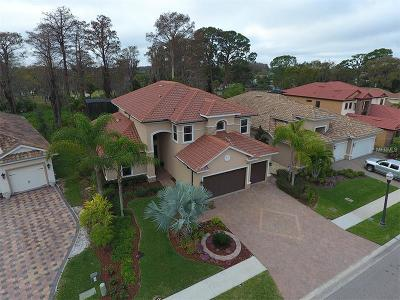 Palm Harbor Single Family Home For Sale: 2630 Grand Lakeside Drive