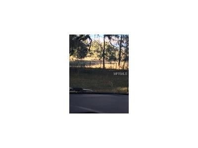 Pasco County Residential Lots & Land For Sale: Bent Fork