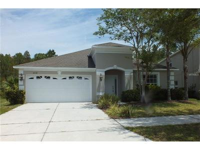 Tampa Single Family Home For Sale: 18138 Bahama Bay Drive