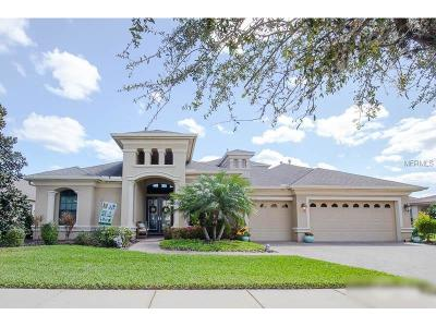 Lithia Single Family Home For Sale: 16324 Palmettoglen Court
