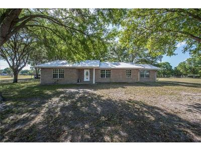 Hillsborough County Single Family Home For Sale: 12830 Us Highway 301 S