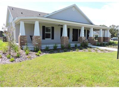 Plant City Single Family Home For Sale: 1203 Wild Daisy Drive
