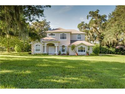 Hernando County Single Family Home For Sale: 23028 Mizell Road
