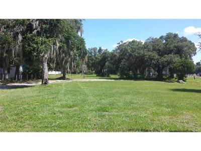 Riverview Residential Lots & Land For Sale: 10715 Us Highway 301 Highway