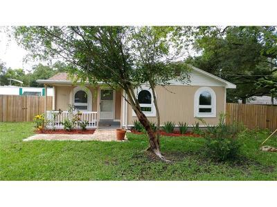 Seffner Single Family Home For Sale: 11609 E Old Hillsborough Avenue