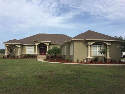 Plant City Single Family Home For Sale: 5301 Bailey Road
