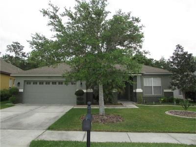 Wesley Chapel Single Family Home For Sale: 6830 Pine Springs Drive