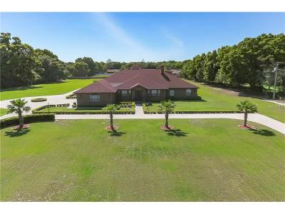 Brandon Single Family Home For Sale: 908 Telfair Road