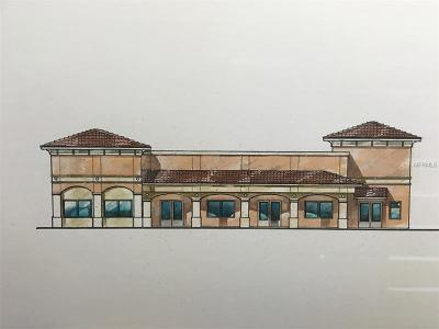 Valrico Commercial For Sale: 1102 Bloomingdale Avenue