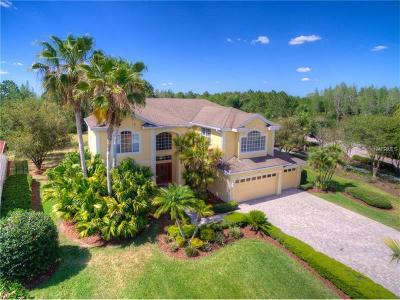 Tampa Single Family Home For Sale: 10750 Cory Lake Drive