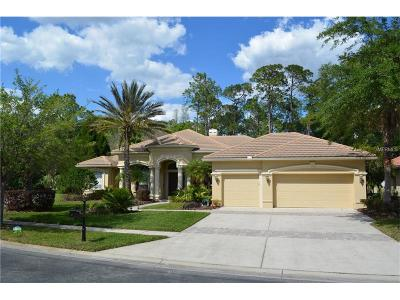 Hillsborough County Single Family Home For Sale: 5004 Waterkey Way